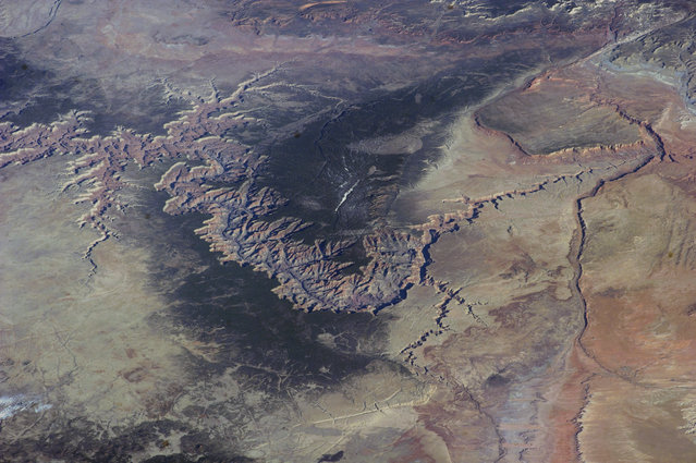 An ISS image of the Grand Canyon taken by astronauts aboard the International Space Station (ISS) on March 25, 2014 above Grand Canyon. (Photo by NASA/SPL/Barcroft Media)