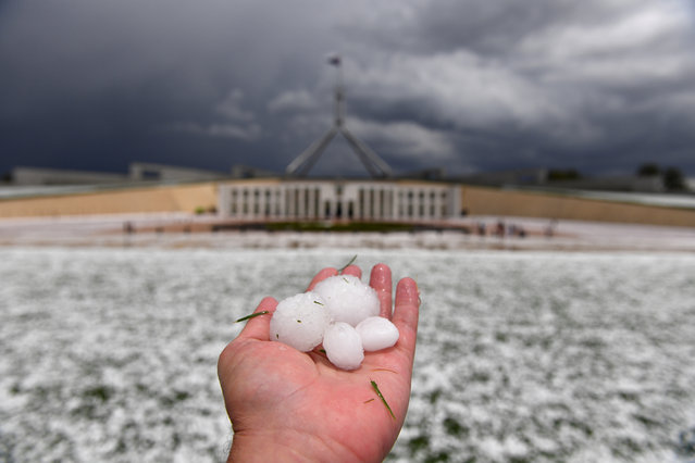 A man shows golf ball-size hail outside Parliament House after a severe hail storm hit Canberra, Australia, 20 January 2020. (Photo by Mick Tsikas/EPA/EFE)
