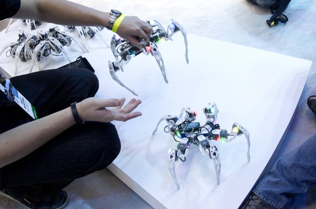 Dancing spider-like robots are displayed at the Intel booth during the 2015 International Consumer Electronics Show (CES) in Las Vegas, Nevada January 6, 2015. The Hexapod robots were made by University of Arizona graduate student Matt Bunting with Intel processors. (Photo by Steve Marcus/Reuters)