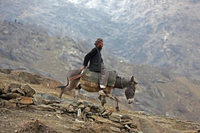 An Afghan man rides a donkey down on a hill on the outskirts of Kabul, Afghanistan, Thursday, February 5, 2015. (Photo by Rahmat Gul/AP Photo)