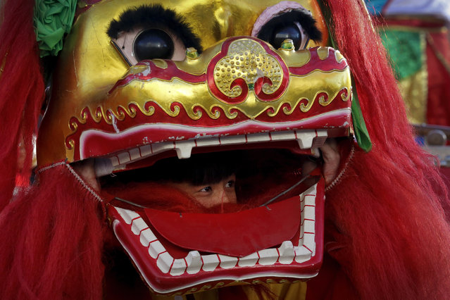 A lion dance performer looks out from the mouth of the lion head at Ditan Park to mark the first day of Chinese Lunar New Year in Beijing, Monday, February 8, 2016. (Photo by Andy Wong/AP Photo)