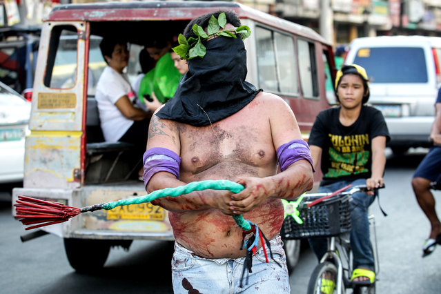 A flagellant walks around town on Holy Wednesday on April 1, 2015 in San Fernando, Philippines. Every year during Holy Week, hundreds of penitents perform acts of penance such as self-flagellation, walking barefoot and carrying a cross in San Fernando, Pampanga. (Photo by Mark Cristino/Barcroft Media)