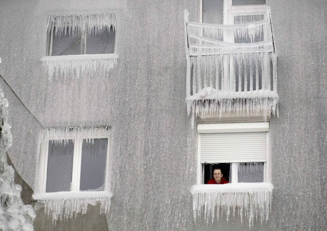 A woman looks out of the window of an ice-covered building in Postojna February 5, 2014. (Photo by Srdjan Zivulovic/Reuters)