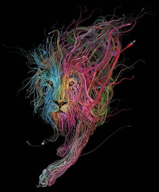 """The Conquering Lion: Plug into the power of Reggae"". (Photo by Charis Tsevis)"