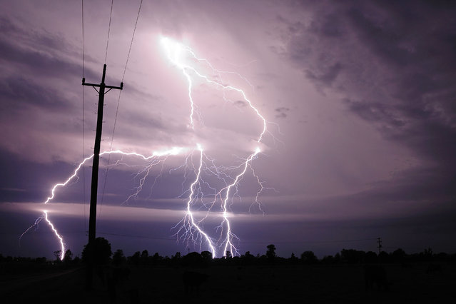 """Lightning Flash Photography"". Near Russell, Kansas, USA – May 25, 2012. (Photo by Michael Bath/Caters News)"