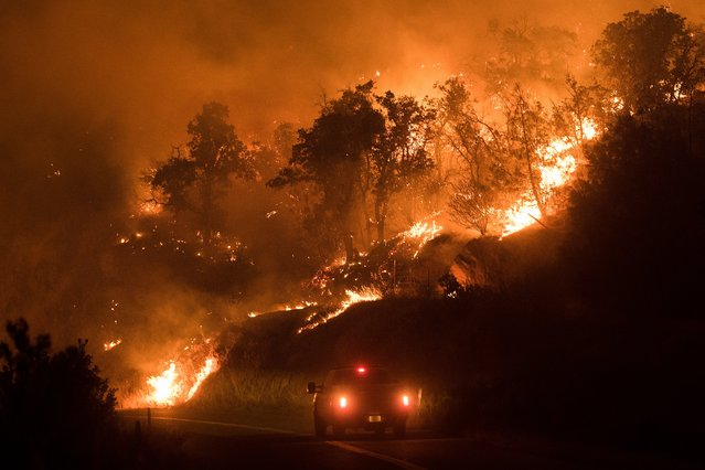 Flames from the Detwiller fire spread down a hillside near Mariposa, California, USA, 17 July 2017. Reports state that road closures and evactuation orders are in place as the fire is affecting around 2,500 acres. (Photo by Noah Berger/EPA)