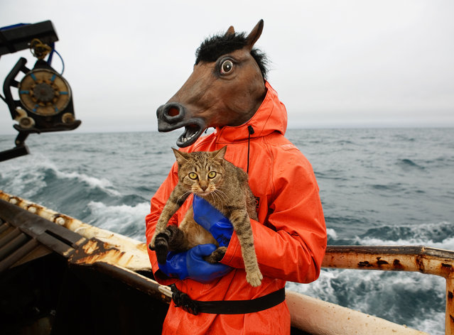 "Despite the high pressure, the crew likes to have fun. Arnold says the camaraderie among the crew drew him to commercial fishing. ""There are people from all walks of American life. You create this temporary civilisation and you share in this crazy adventure together"", Arnold says. Here: a crew member on the f/v Rollo tries out his Halloween costume and holds the boat Kitty. (Photo by Corey Arnold)"
