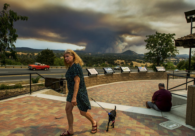 Lauren Rice and her dog Leroy go for a walk with a wildfire burning in the background Thursday September 10, 2015, near Jackson, Calif. (Photo by Andrew Sent/The Sacramento Bee via AP Photo)