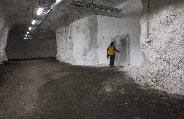 "A worker opens the iced entrance door to storeroom 1 at international gene bank Svalbard Global Seed Vault (SGSV) near Longyearbyen on Spitsbergen, Norway, October 20, 2015. Two consignments of crop seeds will be deposited next year in a ""doomsday vault"" built in an Arctic mountainside to safeguard global supplies. The vault, which opened on the Svalbard archipelago in 2008, is designed to protect crop seeds, such as beans, rice and wheat against the worst cataclysms of nuclear war or disease. (Photo by Anna Filipova/Reuters)"