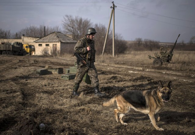 An Ukrainian soldier patrols territory near Debaltseve, eastern Ukraine, Sunday, February 8, 2015. The government-held town of Debaltseve, a key railway junction, has been the epicenter of recent battles between Russian-backed separatists and Ukrainian government troops. (Photo by Evgeniy Maloletka/AP Photo)