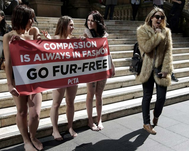 A passer-by appears to mock anti-fur protesters Tanya Ward, Zoe Crawford and Jacqui House, who stripped to their underwear in an attempt to persuade clothing designers to stop using animal fur, in Sydney, Australia, on August 21, 2013. The protesters from PETA are demonstrating in front of  Sydney Town Hall, where a fashion festival is set to begin. (Photo by Rick Rycroft/Associated Press)
