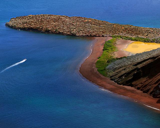 Galápagos. (Photo by Diego Bermeo)