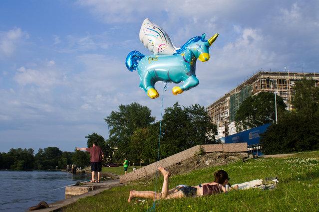 Untitled. (Ilya Shtutsa)