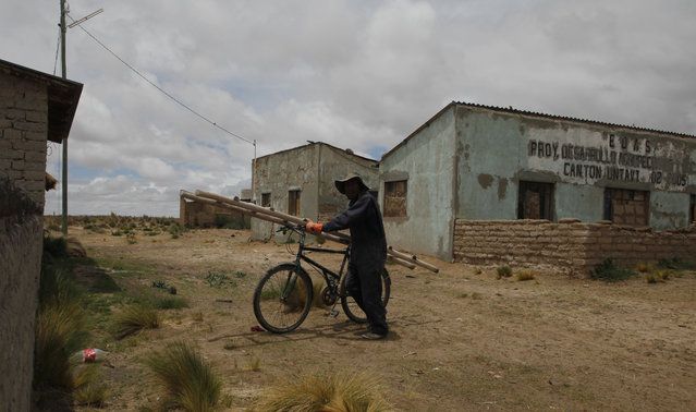 """In this January 12, 2016 photo, fisherman Cirilo Choque, carries a ladder on his bicycle, as he walks to his job as bricklayer in Untavi, near the shores of Lake Poopo, Bolivia.  """"We are really worried because the lake dried up and that the authorities have not helped. Hopefully they will really help us. Before the lake dried up there were about 200 families living here, now only about 70 are left. Most are elderly people or children, the others left to find jobs in the city or other places"""". (Photo by Juan Karita/AP Photo)"""