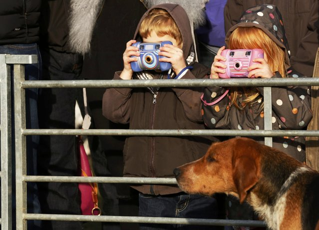Young photographers take photographs of hounds as the New Forest Hunt gathers at at Boltons Bench for the annual Boxing Day hunt in Lyndhurst, southern England, Britain December 26, 2016. (Photo by Luke MacGregor/Reuters)
