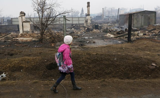 A girl walks near the debris of burnt buildings in the settlement of Shyra, damaged by recent wildfires, in Khakassia region, April 13, 2015. (Photo by Ilya Naymushin/Reuters)