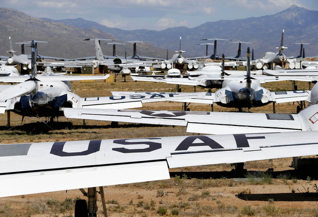 U.S. Air Force Cessna T-37 Tweet aircraft, foreground, are grouped together at the 309th Aerospace Maintenance and Regeneration Group boneyard at Davis-Monthan Air Force Base in Tucson, Ariz. on Thursday, May 14, 2015. (Photo by Matt York/AP Photo)