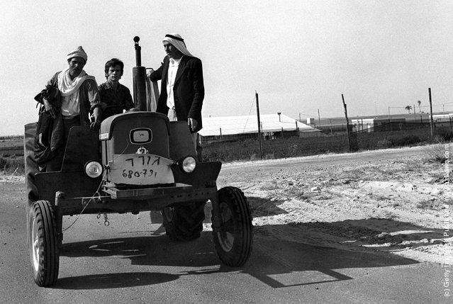 An Israeli settler farmer carries a couple of local Bedouin laborers on his tractor March 10, 1972 in the Israeli settlement of Moshav Sadot, in the Yamit area in the Sinai Desert
