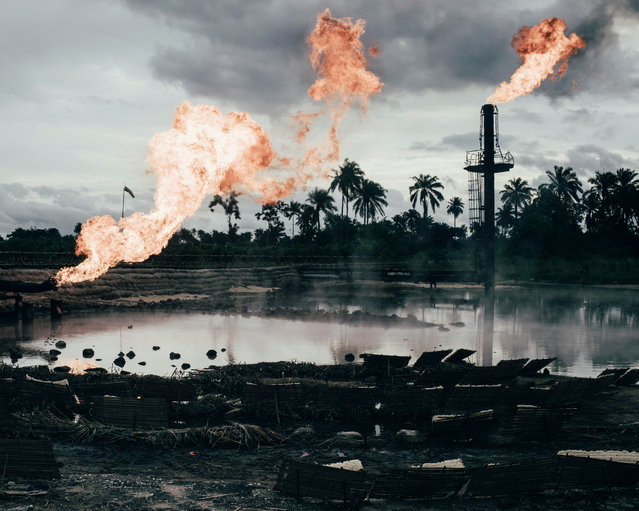 Environment finalist. More than 6,810 oil spills took place between 1976 and 2001 in Niger delta, amounting to 3m barrels, according to a UN report. So far, the Nigerian authorities and oil firms have done little to clean up the delta. Another issue is gas flaring, a byproduct of oil extraction which destroys crops, pollutes water and damages people's health. Photo essay from Niger by Robin published here. (Photo by Robin Hinsch/Sony World Photography Awards)