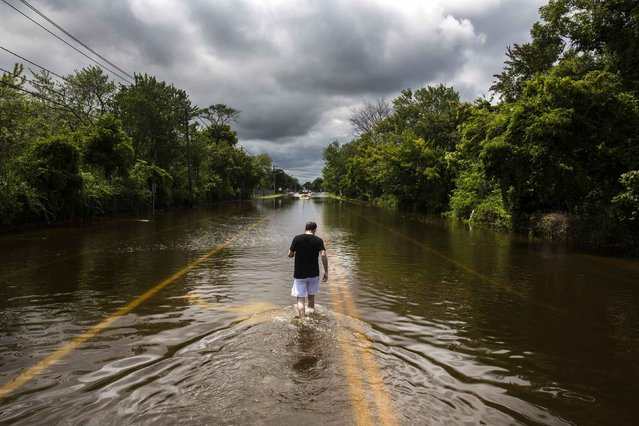A man walks down a flooded road in Islip, New York August 13, 2014. More than a foot of rain hit parts of New York's Long Island on Wednesday, enough to set a preliminary state record, triggering flash floods and swamping cars on major roads that were turned into rivers during the morning rush hour. (Photo by Lucas Jackson/Reuters)