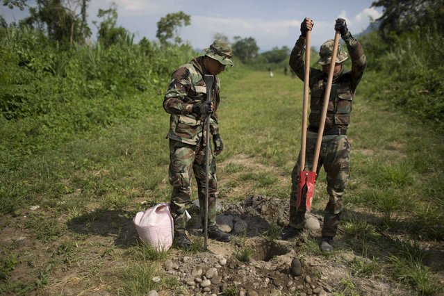 In this September 19, 2014 photo, counternarcotics officers make hole for placing explosives during the destruction of a clandestine airstrip in the Apurimac, Ene and Mantaro River Valleys, or VRAEM, the world's No. 1 coca-growing region, in Ayacucho, Peru. The dynamiting of craters by Peruvian security forces into clandestine airstrips in the VRAEM cuts into profits but hardly discourages cocaine traffickers who net tens of thousands of dollars with each flight. (Photo by Rodrigo Abd/AP Photo)