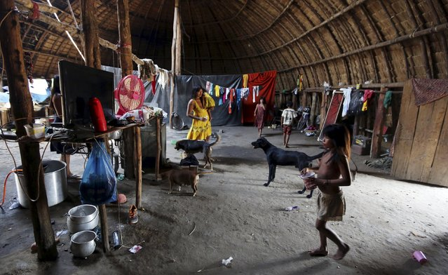 Indigenous people from the Kamayura tribe stand inside their house in their village at Xingu national park in Mato Grosso, Brazil, October 2, 2015. (Photo by Paulo Whitaker/Reuters)