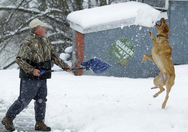 Bill Groves plays with his dog Red while shovelling snow during a massive blizzard near Mt. Jackson, Virginia March 6, 2013. Washington and its suburbs face what could be their heaviest snowfall in two years on Wednesday, as a fierce storm headed east after blanketing the Midwestern United States, snarling traffic and causing hundreds of flight cancellations. (Photo by Gary Cameron/Reuters)