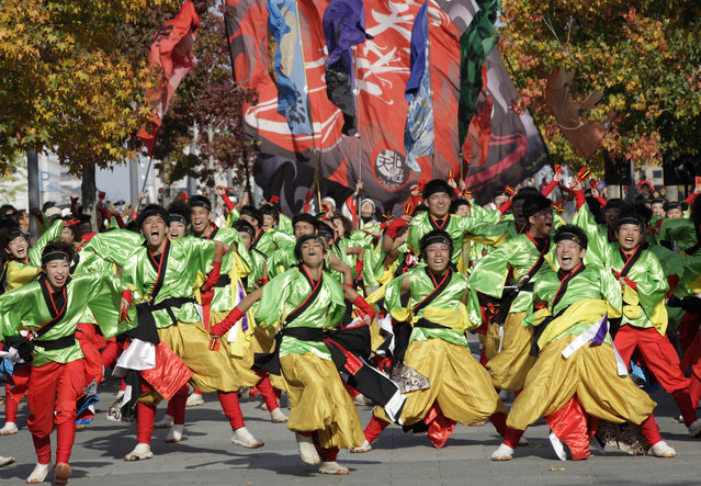 Participants perform as they parade through Tokyo streets during an annual Yosakoi festival in Tokyo, Sunday, November 1, 2015. Yosakoi is a unique and modern rendition of the popular traditional Japanese dance of Awa Odori and many troupes compete with their choreographed dance in colorful costumes, performed often with the Japanese instrument of Naruko, a clapper held in both hands. (Photo by Shizuo Kambayashi/AP Photo)