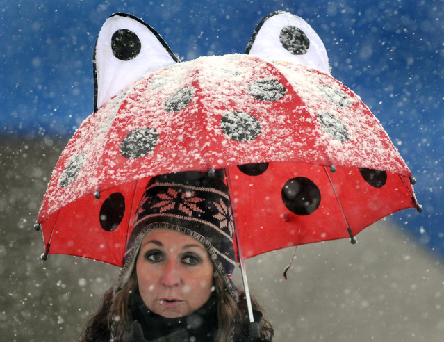 Kellie Shea of Worcester, Mass. uses an umbrella to take shelter from the heavy wet snow while watching the Doherty vs. Burncoat Thanksgiving Day football game at Foley Stadium in Worcester on Wednesday, November 26, 2014. The football game was rescheduled because of the snow storm. (Photo by Paul Kapteyn/AP Photo/Worcester Telegram & Gazette)