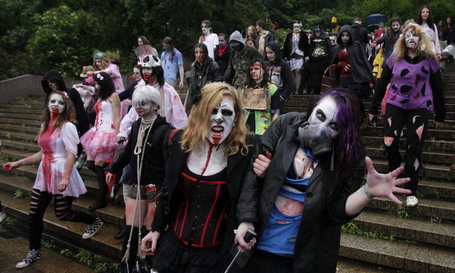 Enthusiasts dressed as zombies take part in the annual Zombie Walk festival in Prague June 1, 2013. (Photo by David W. Cerny/Reuters)