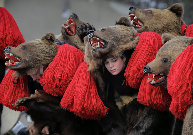 People wearing bear fur costumes dance during the annual bear ritual gathering in Comanesti, Romania, Friday, December 30, 2016. In pre-Christian rural traditions, dancers wearing colored costumes or animal furs, toured from house to house in villages singing and dancing to ward off evil, in the present the tradition has moved to Romania's cities too, where dancers travel to perform the ritual for money. (Photo by Vadim Ghirda/AP Photo)
