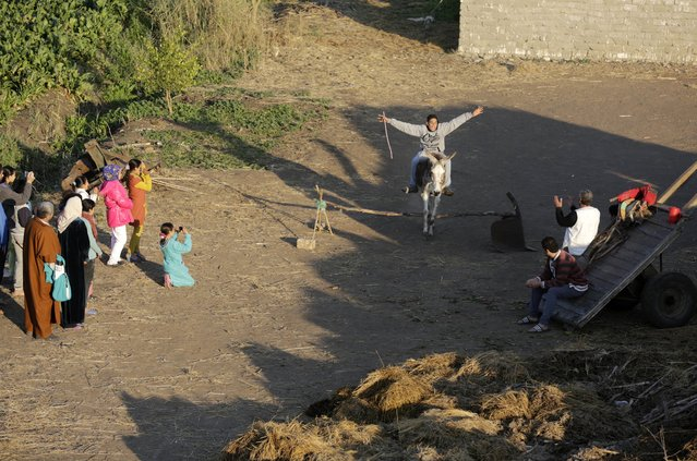 """In this Friday, February 5, 2016 picture, Ahmed Ayman, 14, rides his donkey as she leaps Equestrian-style over a barrier in the Nile Delta village of Al-Arid about 150 kilometers north of Cairo, Egypt. """"I have never seen a jumping donkey before. We even tried it with another donkey and when it reached the barrier it stopped"""", said Abdel-Moneim Sayed, Ayman's uncle. (Photo by Amr Nabil/AP Photo)"""