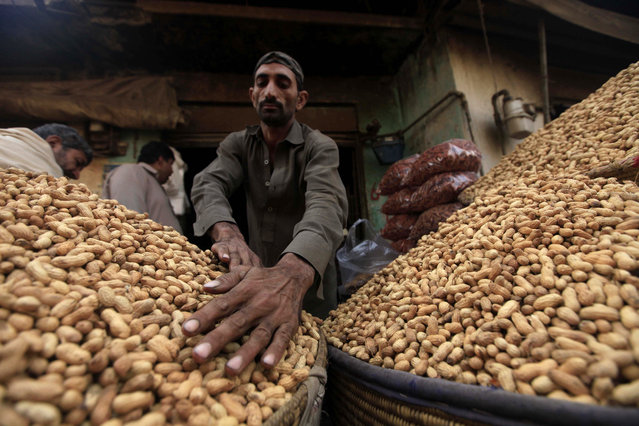 A Pakistani vendor sells peanuts on a roadside in Peshawar, Pakistan, 02 January 2019. After a good raining season, the sales of dry fruits flourish in the country. Tourists from all over Pakistan come to Peshawar to purchase dry fruits along with other items because of price differences between different parts of the country. (Photo by Bilawal Arbab/EPA/EFE)
