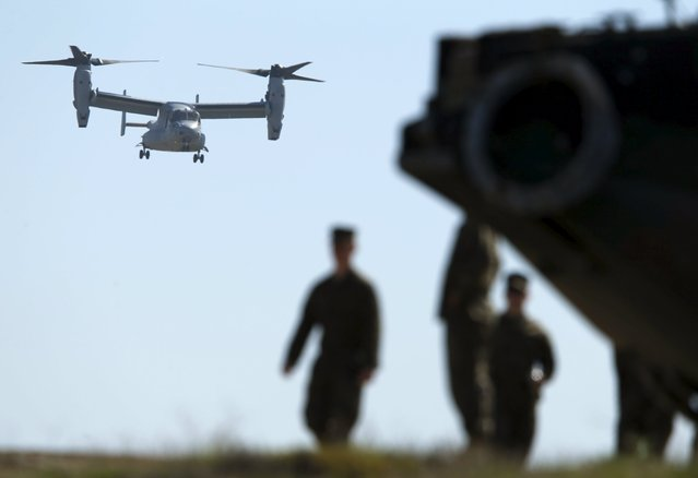 A U.S. Marine Osprey aircraft comes in to land as Japan's Ground Self Defense Force train alongside U.S. Marines during the bilateral annual Iron Fist military training exercise in Camp Pendleton, California February 26, 2016. (Photo by Mike Blake/Reuters)