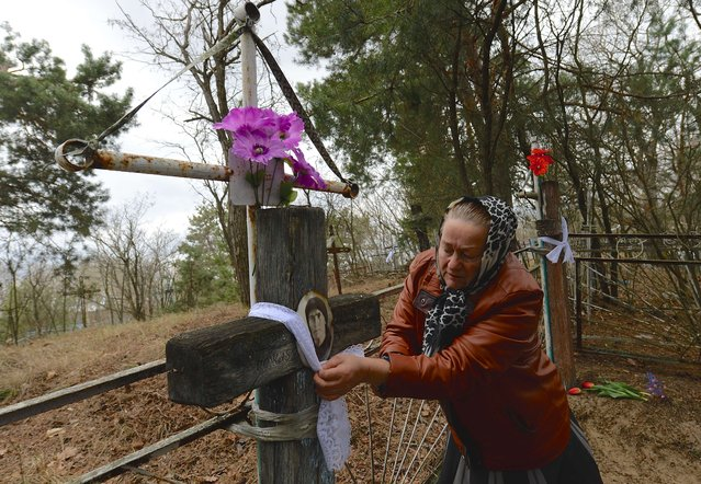 A woman ties a ribbon around a cross at a cemetery on Radunitsa day, All Souls' Day, in the abandoned village of Orevichi, inside the exclusion zone around the Chernobyl nuclear reactor, some 390 km of Minsk, on April 21, 2015. (Photo by AFP Photo/Stringer)