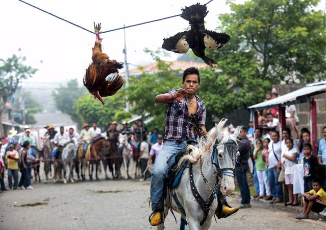 A youth attempts to pull off the head of a live rooster while riding a horse during celebrations in honour of San Juan Bautista in San Juan de Oriente town, Nicaragua, June 26, 2015. (Photo by Oswaldo Rivas/Reuters)