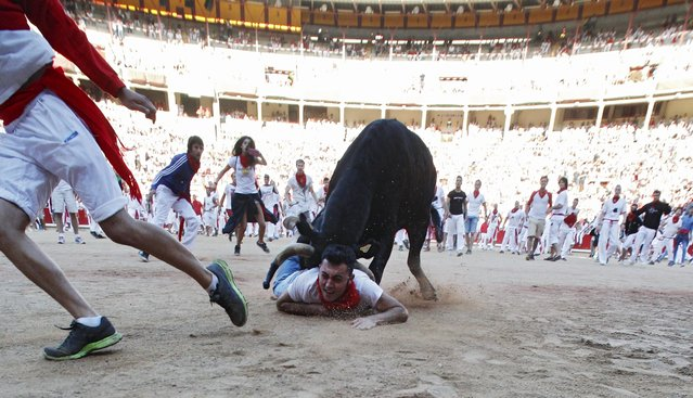 A wild cow charges at a reveller after the seventh running of the bulls of the San Fermin festival in Pamplona, northern Spain, July 13, 2015. (Photo by Joseba Etxaburu/Reuters)