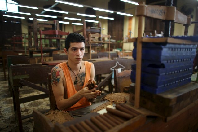 Gioerqui Hernandez, 21, who has a degree in gastronomy, rolls tobacco at the H. Upmann factory in Havana, February 26, 2015. (Photo by Alexandre Meneghini/Reuters)