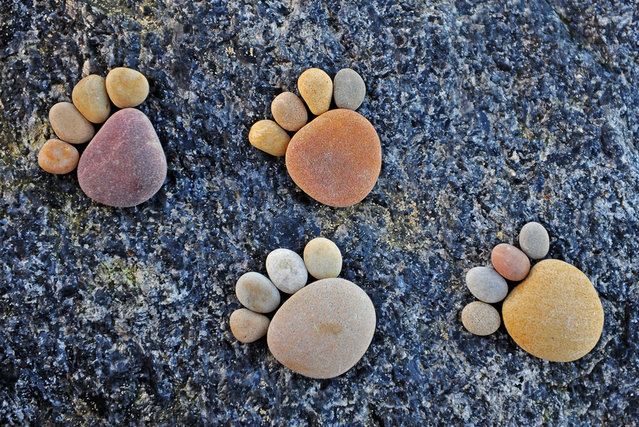 Stone Footprints By Iain Blake