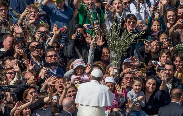 Pope Francis is cheered by the crowd after celebrating his first Palm Sunday Mass, in St. Peter's Square, at the Vatican as tens of thousands joyfully waved olive branches and palm fronds, on March 24, 2013. The square overflowed with some 250,000 pilgrims, tourists and Romans eager to join the new pope at the start of solemn Holy Week ceremonies. (Photo by Alessandra Tarantino/Associated Press)