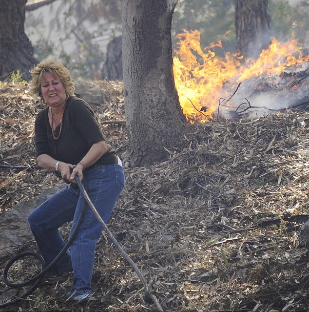 A resident pulls a hose line to attempt to stop flames from spreading down the hillside as a raging wildfire pushes towards the coast in Camarillo May 2, 2013. The wind-driven brush fire raging along the California coast north of Los Angeles prompted the evacuation of hundreds of homes and a university campus on Thursday as flames engulfed several farm buildings and recreational vehicles near threatened neighborhoods. (Photo by Gene Blevins/Reuters)