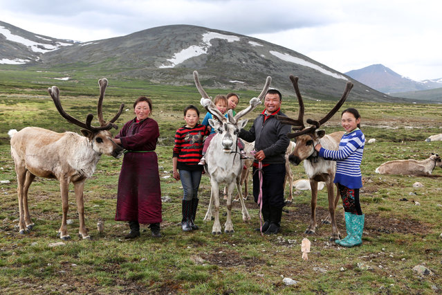 A family poses proudly with some of their reindeer. From left, Bolorma, Ulziitsetseg, Tuvshinbayar, Ulziichimig, Narahuu and the oldest daughter, Ulziisaihan. (Photo by Pascal Mannaerts/Rex Feature/Shutterstock)