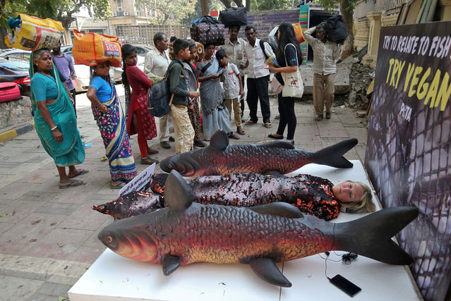 People watch Ingrid Newkirk, the President of PETA (People for The Ethical Treatment of Animals), wearing a fish costume between models of fish, to protest against their killing and consumption, on a pavement in Mumbai, India, December 7, 2018. (Photo by Francis Mascarenhas/Reuters)