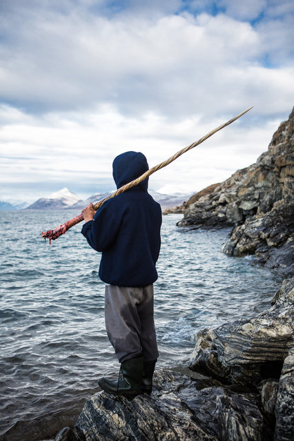 """""""Narwhal Hunter"""". A local hunter of Pond Inlet grasps tightly onto a 5ft 6in tusk as he reflects on his recent Narwhal Kill. Photo location: Pond Inlet, Nunavut, Canada. (Photo and caption by Adam Coish/National Geographic Photo Contest)"""