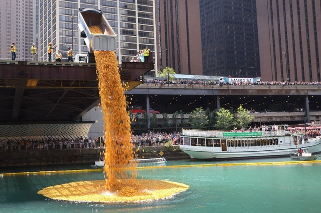 Rubber ducks are dropped into the Chicago River at the start of the Chicago Ducky Derby on August 05, 2021 in Chicago, Illinois. Derby organizers dropped 70,000 rubber ducks into the river to raise money for Special Olympics Illinois. Donors sponsored ducks in the derby for $5 each. The sponsor of the first duck to cross the finish line won a new SUV. (Photo by Scott Olson/Getty Images)