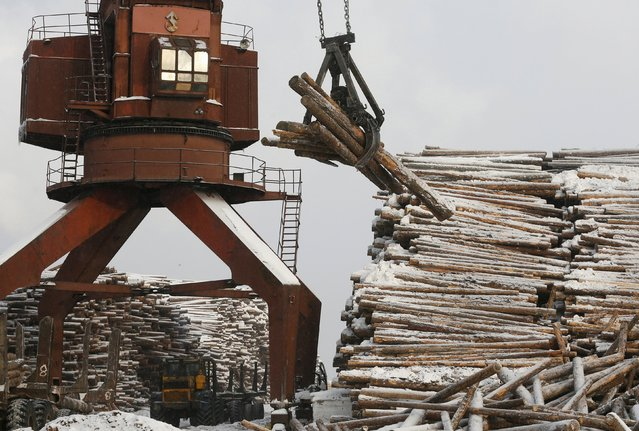 A crane loads logs at the Novoyeniseisk wood processing plant, with the air temperature at about minus 20 degrees Celsius (minus 4 degrees Fahrenheit), in the town of Lesosibirsk in Krasnoyarsk Region, Siberia, Russia, February 16, 2016. The plant exports timber to Europe, Northern Africa and Asia. The Taiga, also known as the boreal forest, on the coast of the Angara River and Yenisei River is one of the main areas for the industrial cutting of wood thanks to the high quality of the Angara pine. (Photo by Ilya Naymushin/Reuters)