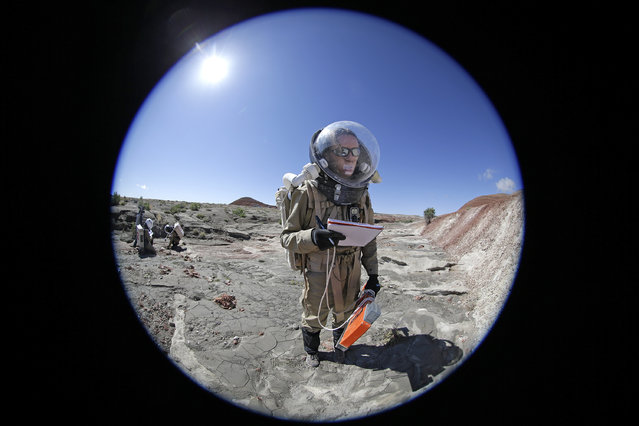 In this photo taken on Saturday, April 18, 2015, Auriane Canesse, crew geologist and health and safety officer, of Crew 153, takes magnetic readings of the ground using a large rectangular apparatus near the Mars Desert Research Station, in Hanksville, Utah. This isn't Mars, but it's resemblance to the red planet has made it a hot spot for teams of geologists, biologists and engineers from around the world who have been coming for more than a decade to simulate missions to the mysterious planet in hopes of providing critical research to for future trips to Mars. (Photo by Rick Bowmer/AP Photo)