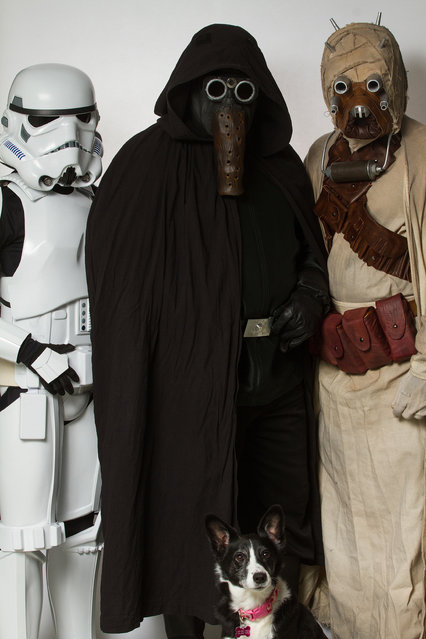 A Storm Trooper, Garindan and Tusken Raider with a dog. (Photo by Rohit Saxena/Caters News)