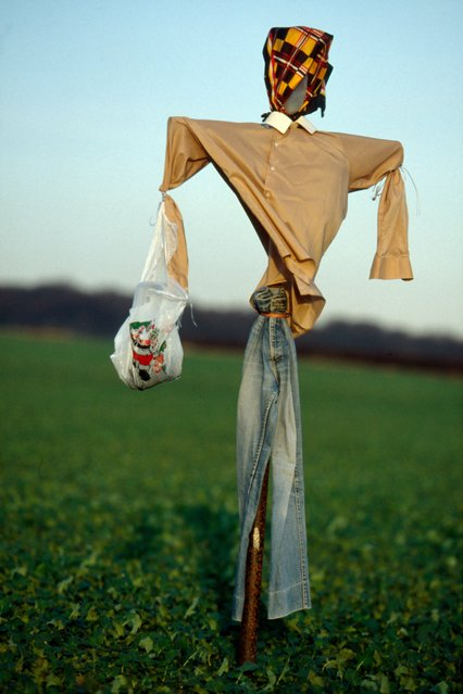 """Scarecrows have changed little over the centuries, although certainly they are better dressed today – in earlier times, vagrants and tramps were quick to strip them of any clothes worth wearing"". (Photo by Colin Garratt)"