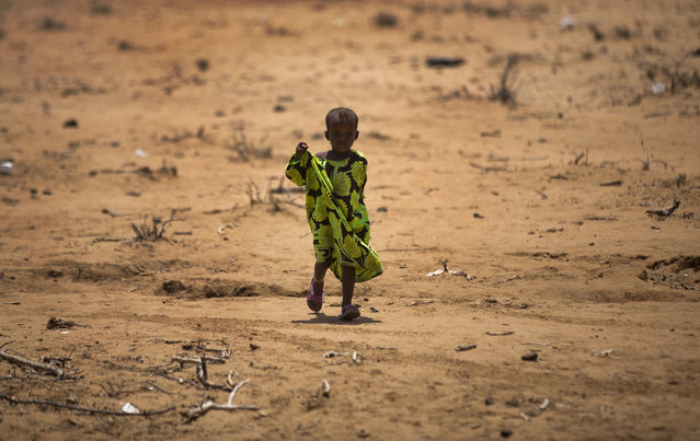 A child walks under the noon sun in the drought-affected village of Bandarero, near Moyale town on the Ethiopian border, in northern Kenya Friday, March 3, 2017. (Photo by Ben Curtis/AP Photo)